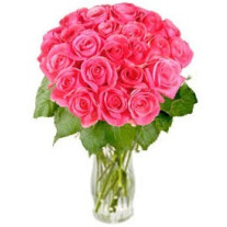 Bunch of Pink Roses Rosy Reveries (without vase)